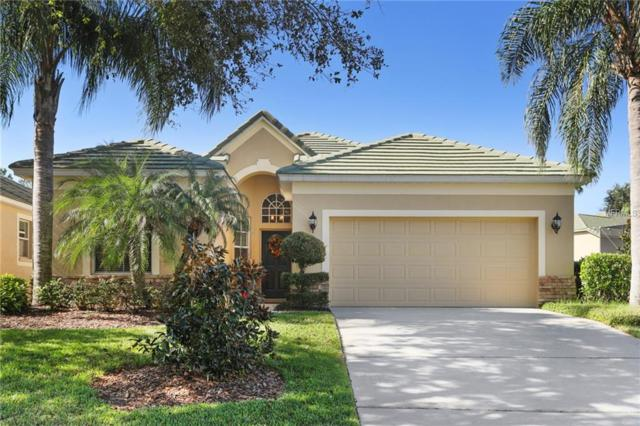 13229 Tradition Drive, Dade City, FL 33525 (MLS #E2400976) :: Team Bohannon Keller Williams, Tampa Properties