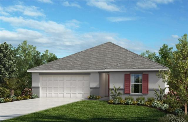 9208 Freedom Hill Drive, Seffner, FL 33584 (MLS #E2400993) :: Revolution Real Estate