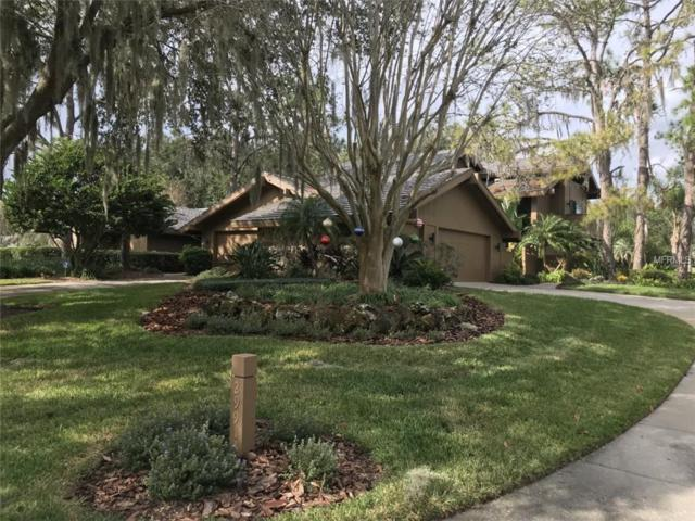 29913 Baywood Lane, Wesley Chapel, FL 33543 (MLS #E2401009) :: Premium Properties Real Estate Services