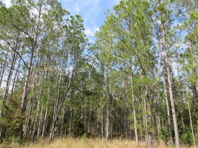 Lot 240 Richland Street, Wesley Chapel, FL 33544 (MLS #E2401212) :: The Duncan Duo Team