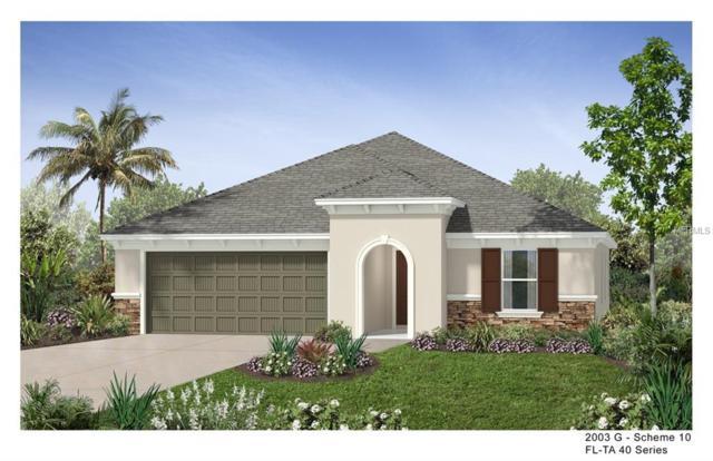 11529 Palmetto Sands Court, Tampa, FL 33626 (MLS #E2401289) :: Andrew Cherry & Company