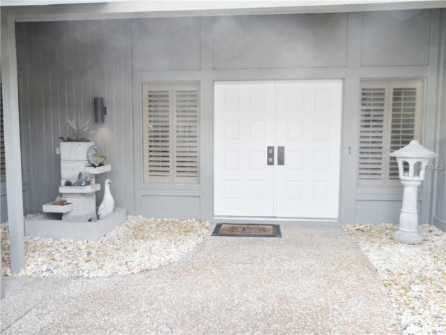 29900 Baywood Lane N, Wesley Chapel, FL 33543 (MLS #E2401302) :: Lovitch Realty Group, LLC