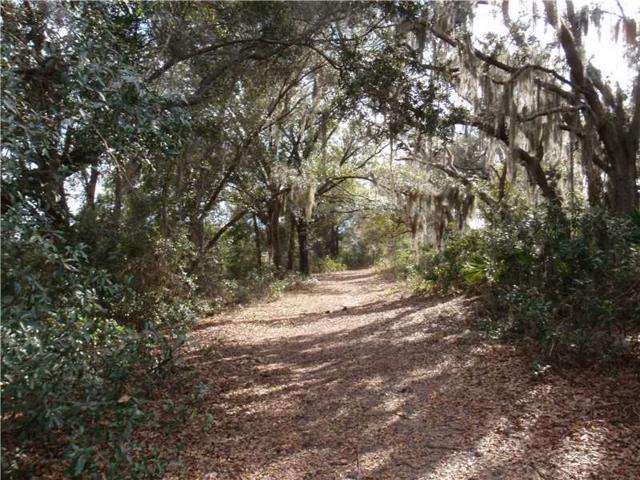 Marsh View Court, Clermont, FL 34711 (MLS #G4692117) :: The Duncan Duo Team