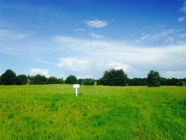 Lot 5 Eagle Run, Groveland, FL 34736 (MLS #G4801996) :: The Duncan Duo Team
