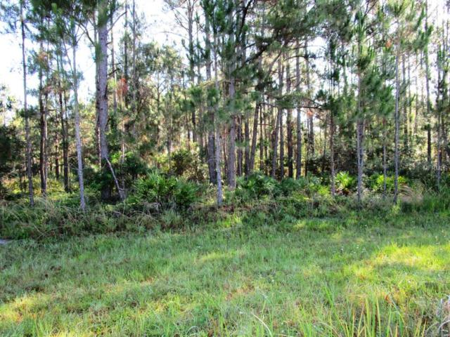 LOT41 Greengrove Boulevard, Clermont, FL 34714 (MLS #G4813077) :: The Duncan Duo Team
