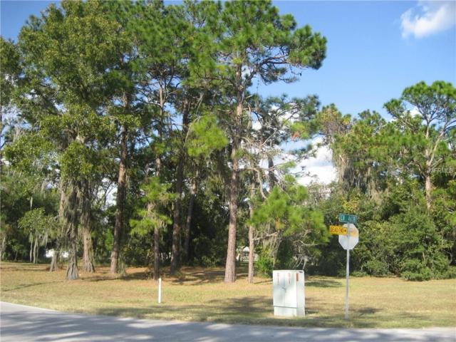 C 470, Lake Panasoffkee, FL 33538 (MLS #G4834504) :: The Duncan Duo Team