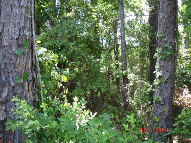Polar Bear Road E, Paisley, FL 32767 (MLS #G4834794) :: Griffin Group