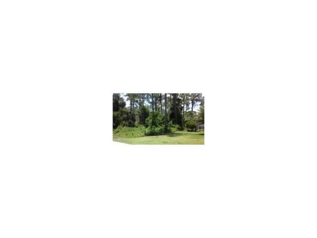 County Road 450, Umatilla, FL 32784 (MLS #G4841531) :: The Price Group