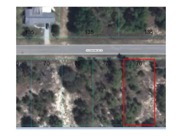 0 SW Marine Boulevard, Dunnellon, FL 34431 (MLS #G4842682) :: The Duncan Duo Team