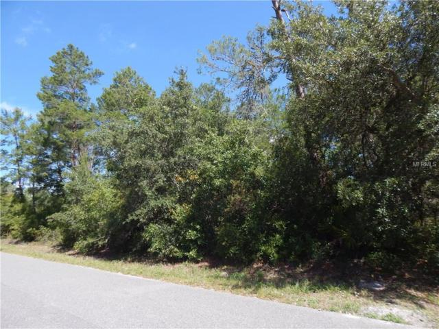 Azalea Avenue, Paisley, FL 32767 (MLS #G4842783) :: The Duncan Duo Team