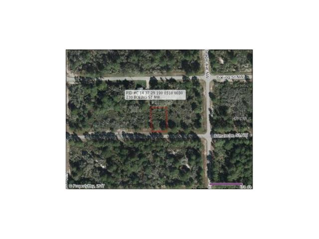 225 Comanche Street NW, Lake Placid, FL 33852 (MLS #G4842863) :: RE/MAX Realtec Group