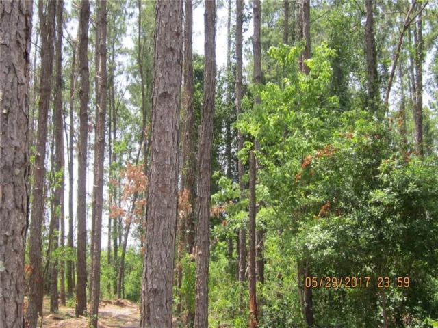 Coffee Creek Lane, Groveland, FL 34736 (MLS #G4843140) :: The Duncan Duo Team