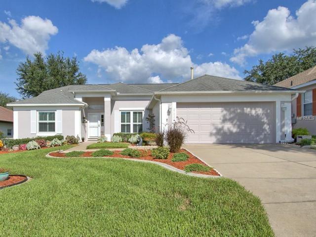 27022 Nature View Street, Leesburg, FL 34748 (MLS #G4844224) :: Team Pepka