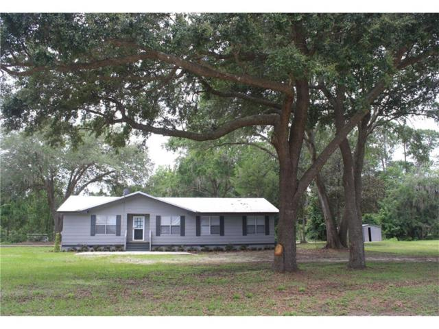 9880 306TH Court, Fort Mc Coy, FL 32134 (MLS #G4844305) :: Baird Realty Group