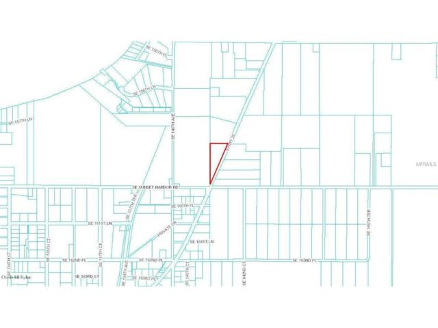 0 S Hwy 25, Weirsdale, FL 32195 (MLS #G4844469) :: G World Properties