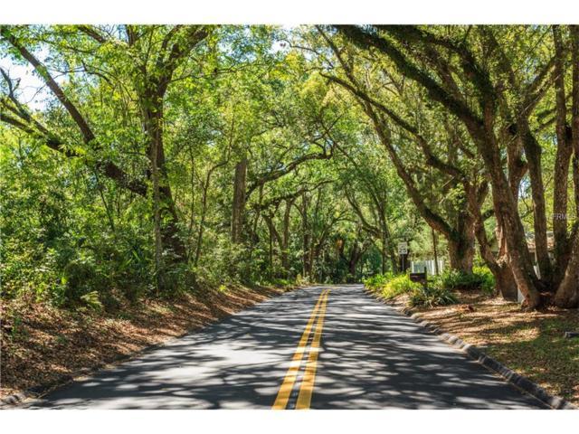 401 Old Eustis Road, Mount Dora, FL 32757 (MLS #G4845011) :: KELLER WILLIAMS CLASSIC VI