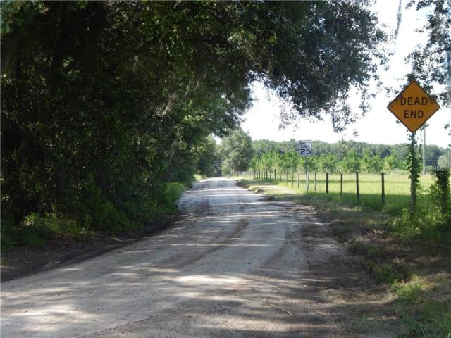 Kilker Road, Paisley, FL 32767 (MLS #G4845109) :: Heckler Realty