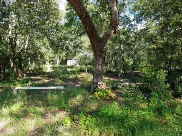 40209 Palm Street, Lady Lake, FL 32159 (MLS #G4845202) :: Premium Properties Real Estate Services