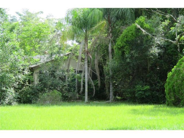 1328 E 8TH Avenue, Mount Dora, FL 32757 (MLS #G4845258) :: KELLER WILLIAMS CLASSIC VI