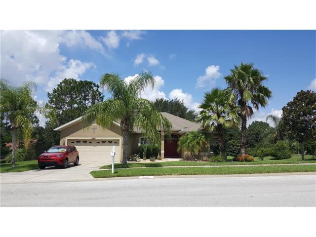 12037 Willow Grove Lane, Clermont, FL 34711 (MLS #G4845274) :: KELLER WILLIAMS CLASSIC VI