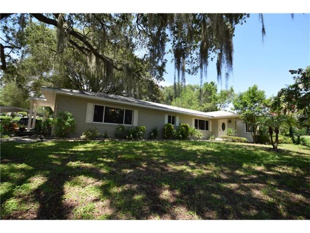 1790 Ramie Road, Clermont, FL 34711 (MLS #G4845276) :: RealTeam Realty
