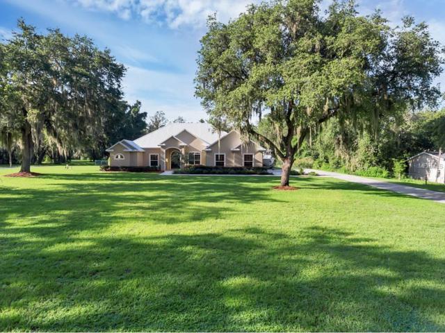 3108 Carter Jones Road, Groveland, FL 34736 (MLS #G4845291) :: RealTeam Realty