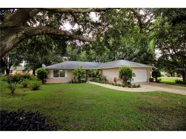 12413 Draw Drive, Grand Island, FL 32735 (MLS #G4845403) :: Cartwright Realty