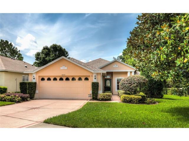 8038 Arcadian Court, Mount Dora, FL 32757 (MLS #G4845413) :: Delgado Home Team at Keller Williams