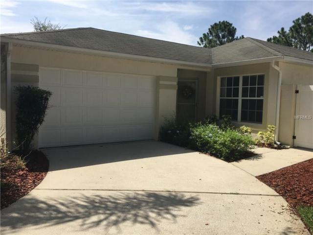 2125 Braxton Street, Clermont, FL 34711 (MLS #G4845482) :: Delgado Home Team at Keller Williams