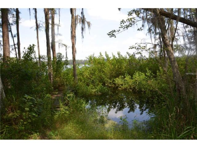 Lake Erie Road, Clermont, FL 34711 (MLS #G4845527) :: RealTeam Realty