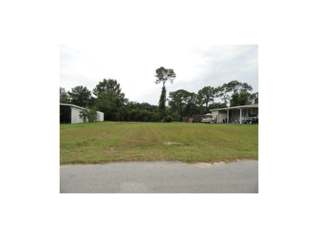 35108 Forest Lake Road, Leesburg, FL 34788 (MLS #G4845556) :: The Duncan Duo Team