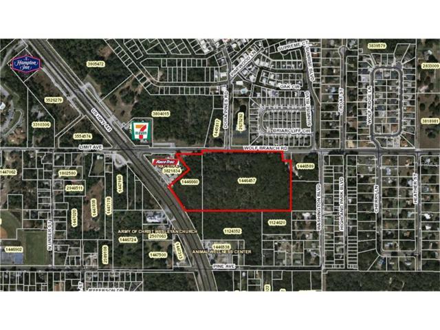 Us Highway 441, Mount Dora, FL 32757 (MLS #G4845943) :: Sosa | Philbeck Real Estate Group