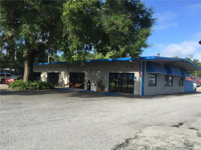11008 SE 66TH Terrace, Belleview, FL 34420 (MLS #G4846056) :: The Duncan Duo Team