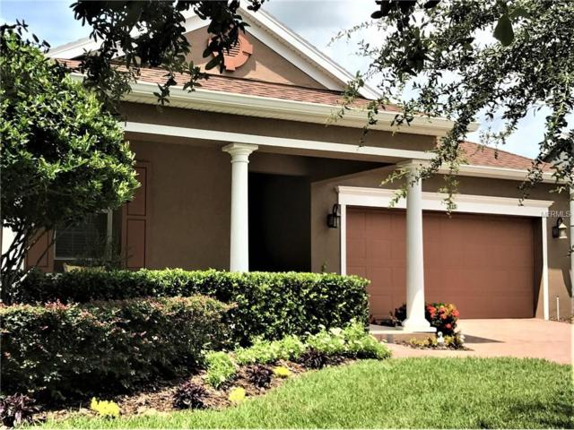 115 Salt Marsh Lane, Groveland, FL 34736 (MLS #G4846356) :: Griffin Group