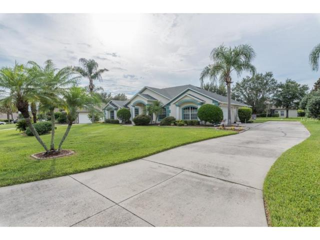 11825 Overlook Drive, Clermont, FL 34711 (MLS #G4846376) :: Sosa | Philbeck Real Estate Group