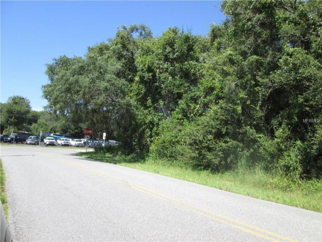 Hwy 50 & American Legion Road, Mascotte, FL 34753 (MLS #G4846454) :: Team Pepka