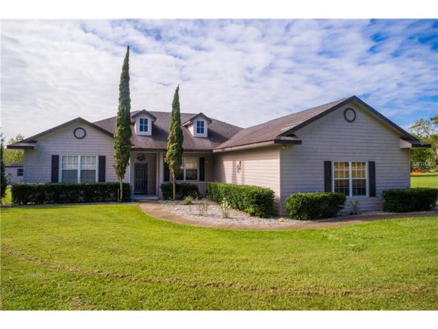 14310 Hunters Trace Lane, Clermont, FL 34715 (MLS #G4846769) :: RealTeam Realty