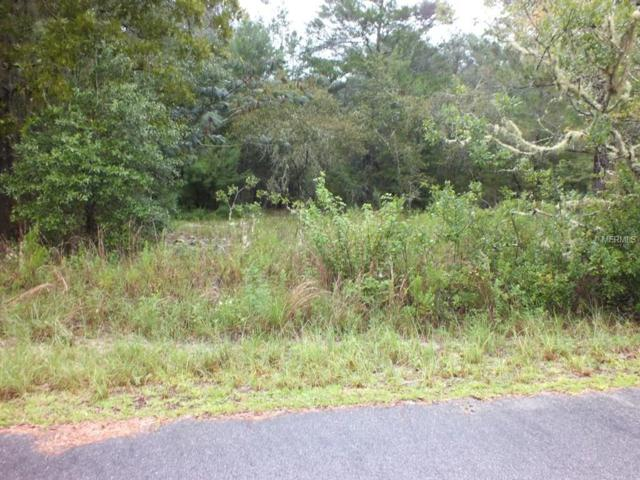 Sw Moines Ct., Dunnellon, FL 34431 (MLS #G4846890) :: The Duncan Duo Team