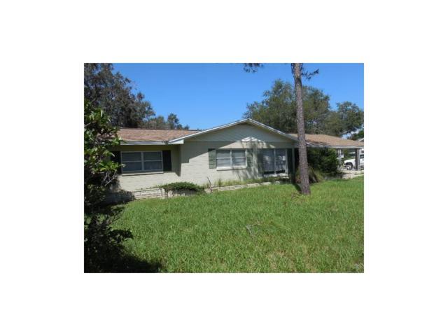 415 E Lakeview Avenue, Eustis, FL 32726 (MLS #G4847069) :: KELLER WILLIAMS CLASSIC VI