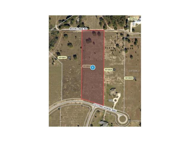 Lot#26 Cutting Horse Way, Groveland, FL 34736 (MLS #G4847093) :: The Duncan Duo Team