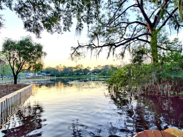 3015 Hardenbergh Lane, Eustis, FL 32726 (MLS #G4847220) :: KELLER WILLIAMS CLASSIC VI