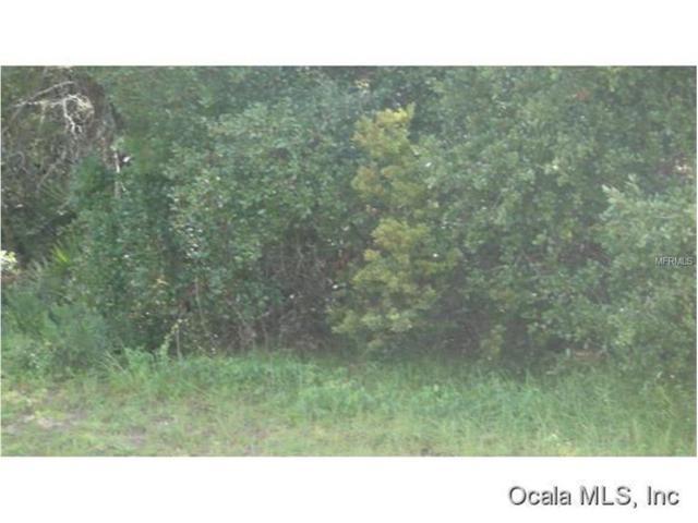 00 Sw 161St Street, Ocala, FL 34473 (MLS #G4847251) :: KELLER WILLIAMS CLASSIC VI