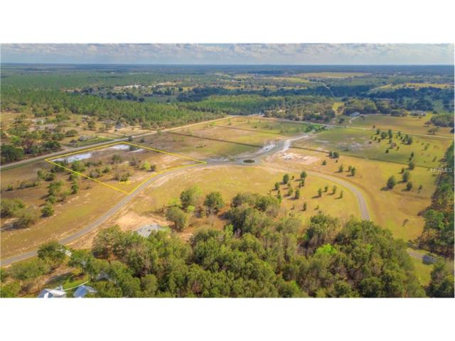 LOT 20 Seneca Reserve Drive, Eustis, FL 32736 (MLS #G4847326) :: Revolution Real Estate