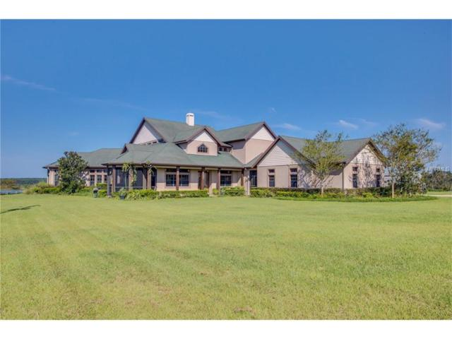 26405 Bloomfield Avenue, Yalaha, FL 34797 (MLS #G4847343) :: Mark and Joni Coulter | Better Homes and Gardens
