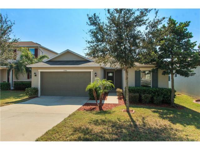 13540 Pitanga Street, Clermont, FL 34711 (MLS #G4847347) :: RealTeam Realty
