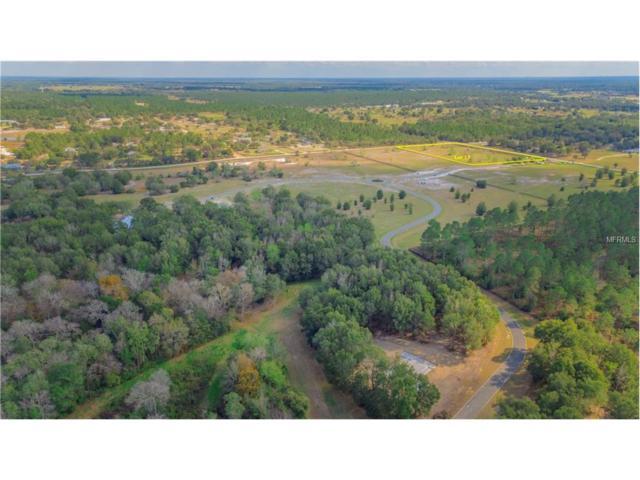 LOT 17 Seneca Reserve Drive, Eustis, FL 32736 (MLS #G4847365) :: KELLER WILLIAMS CLASSIC VI