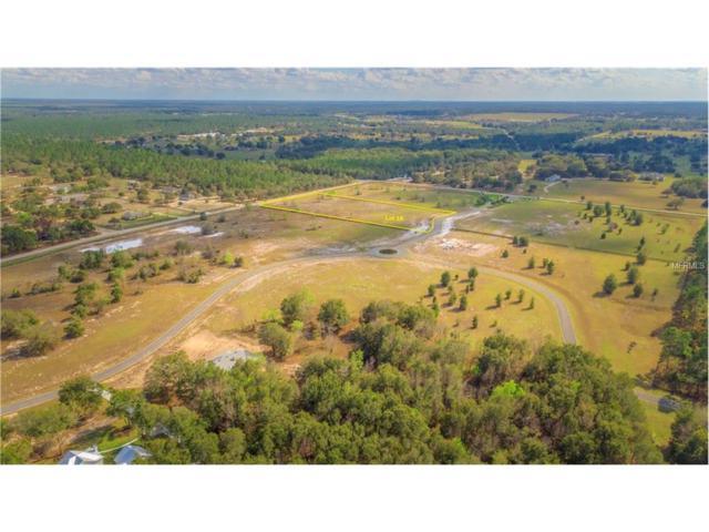 LOT 18 Seneca Reserve Drive, Eustis, FL 32736 (MLS #G4847372) :: KELLER WILLIAMS CLASSIC VI