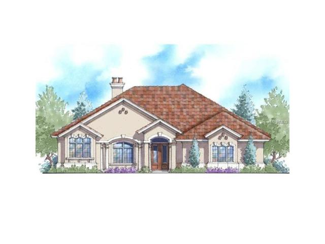 24211 Bear Paw Drive, Eustis, FL 32736 (MLS #G4847387) :: KELLER WILLIAMS CLASSIC VI
