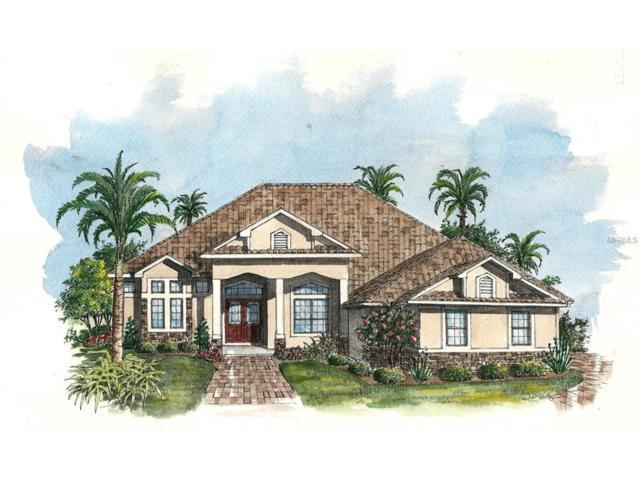 3053 Isola Bella Boulevard, Mount Dora, FL 32757 (MLS #G4847397) :: The Duncan Duo Team