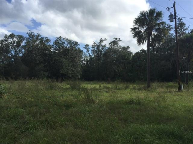 44641 State Road 19, Altoona, FL 32702 (MLS #G4847815) :: Griffin Group
